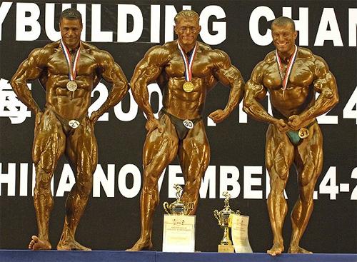 Чемпионат мира -2005, Ахмад Хаммуда, Деннис Вульф, Вячеслав Пиликов