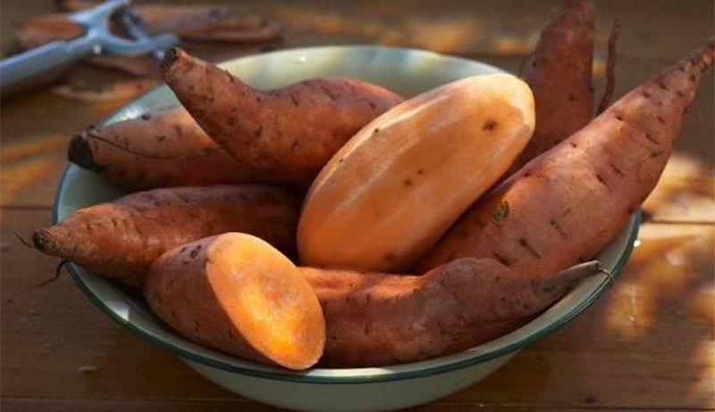 7 лучших продуктов питания для бодибилдинга - батат (сладкий картофель)