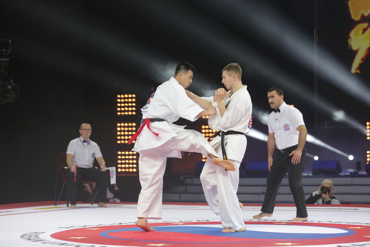 Профессионалы WFKO на «Битве чемпионов -10»