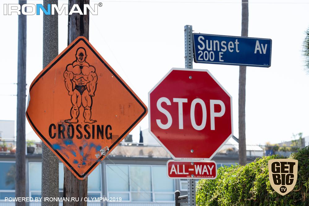 Дорога на «Олимпию»-2019: Лос-Анжелес. Ощущения на кончиках пальцев.